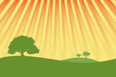 Green meadows with sunshine ra royalty free illustration