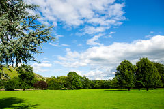 Green Meadows and Trees in Beautiful Ilam Hall  in Peak District Stock Image
