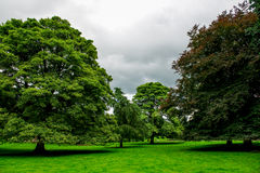 Green Meadows and Trees in Beautiful Ilam Hall  in Peak District Stock Images