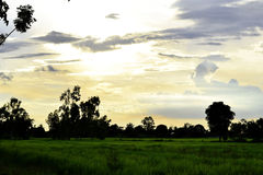 Green meadows, white and gray clouds, blue skies and orange sunset . Royalty Free Stock Photo