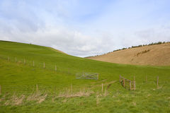 Green meadows in yorkshire Royalty Free Stock Photo