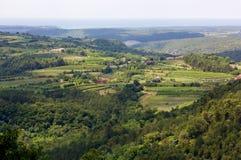 Green Mediterranean Landscape Royalty Free Stock Photo