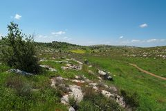 Green Mediterranean valley among hills in spring. In Israel Stock Image