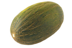 Green melon Royalty Free Stock Photography