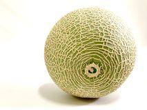 Green Melon fruit on a white background. Green Melon fruit with smooth surface on a white background stock images