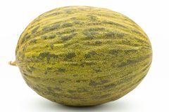 Green melon on white background Royalty Free Stock Image