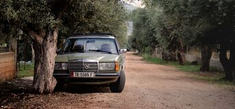 Green Mercedes Benz W123 Parked Near Tree Royalty Free Stock Photo