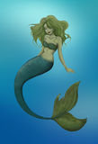 Green mermaid Stock Images