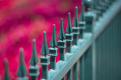 Green metal fence Stock Photos