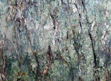 Green metamorphic rock. Metamorphic green rock close up Stock Photo