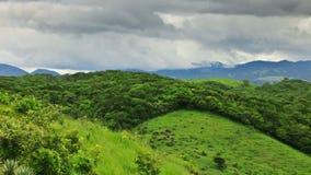 Green mexican landscape  Stock Photos