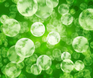 Green Microbes Texture Stock Photography