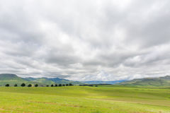 Green middel field. South Africa Stock Photo