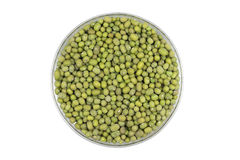 Green millet seeds in a glass Stock Photos