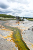 Green Mineral Flow. Some of the hot springs at Yellowstone National Park had different colors and over flowed to have little streams leading from the pools. In Royalty Free Stock Photo
