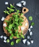 Green mint and ice royalty free stock photos