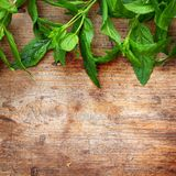 Green leaves on wooden background. Green mint leaves on wooden background Stock Image
