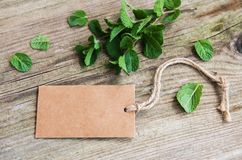 Green mint with old paper tag. On a old wooden background royalty free stock photography