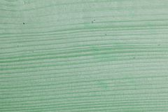 Green mint painted wood board texture and background. Green mint natural wooden background. Aged wood planks pattern. Wooden. Green mint painted wood board stock photography