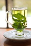 Green mint tea Royalty Free Stock Photo