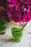 Green mint tea royalty free stock images