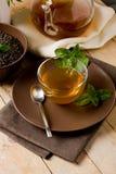 Green mint tea Royalty Free Stock Image