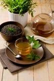 Green mint tea Stock Photography