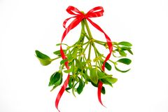 Green mistletoe with ribbon isolated on white background. Christmas concept.  stock image