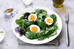 Green mix salad with eggs Stock Image
