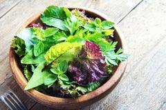 Green mixed salad leaves Royalty Free Stock Photos