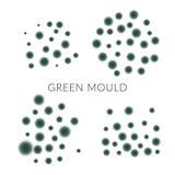 Green mold isolated on white background. Vector illustration. EPS 10 vector illustration
