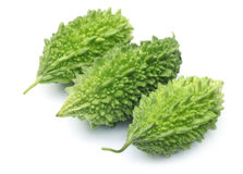 Green Momordica or karela Royalty Free Stock Photo