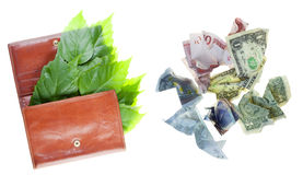 Green money concept Royalty Free Stock Photography