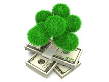 Green Money. Symbol of environment and ecology. A Tree growing out of dollar bills. 3D rendered Illustration Stock Photos