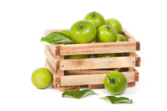 Green Monkey apple or jujubes in wooden crate Royalty Free Stock Photography