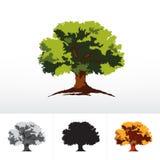 Green or monochrome oak tree Royalty Free Stock Photos