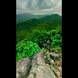 Green. Monsoon view from top Stock Images