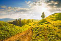 Green morning. Early morning in a Carpathian valley with beautiful light of sunrise. Spring time Stock Photo
