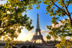 Green morning Eiffel Royalty Free Stock Images