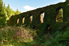 Green Moss Covered Aqueduct in Sao Miguel. Towering moss covered aqueduct near Sete Cidades in Sao Miguel royalty free stock images