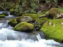 Smokey Mountains Stream Royalty Free Stock Photos