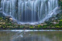 Green moss covered stones in waterfalls royalty free stock image