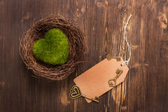 Green moss heart in a nest, keys and paper tag Stock Photos