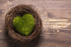 Green moss heart in a nest Stock Photos