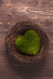 Green moss heart in a nest Royalty Free Stock Image