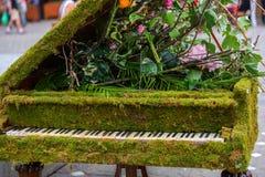 Green moss piano Royalty Free Stock Photo