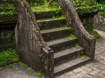 Green moss and plants covered the old cement staircase. royalty free stock photo