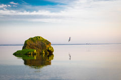 Green Mossed Rock Formation on a Calm Sea Water Royalty Free Stock Photo