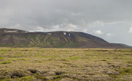 Green mossy landscape of Iceland Stock Photo