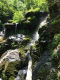Green mossy waterfall Royalty Free Stock Image